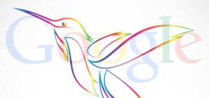 Google's Hummingbird Takes Flight: SEOs Give Insight On Google's New Algorithm